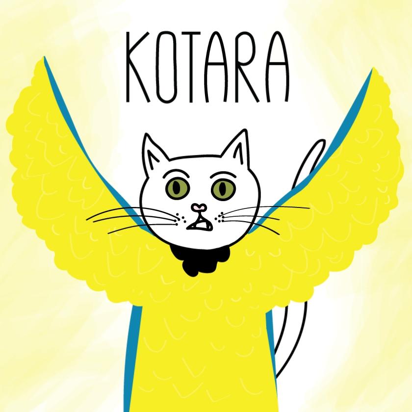 kotara